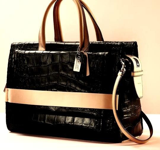 Luxury Coach Bag